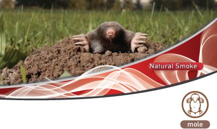 Biofume Mole Smoke Generator is a repellent against moles